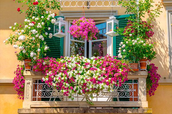 consejos para decorar balcones con flores