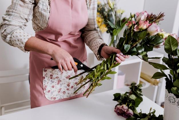 cuidando flores en casa invierno